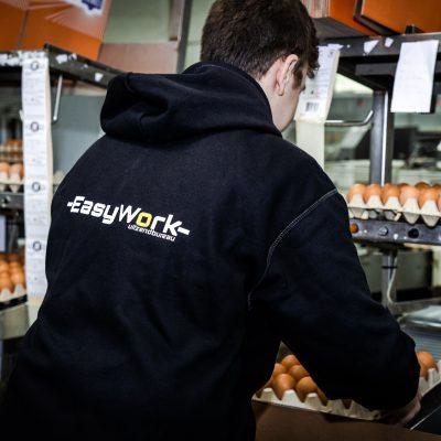 EasyWork web-6